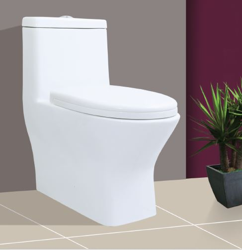 Nano Siphonic One Piece Toilet